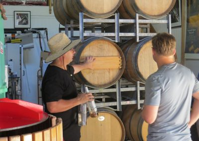 Waiheke Wine Tours with Waivino, we have a deep knowledge of Waiheke wines