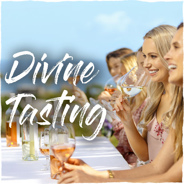 Waivino Wine Tours on Waiheke Island