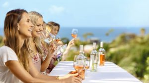Waiheke Island Wine Tour, Auckland wine tours, Wine Tours on Waiheke Island, Ananda Tours, Waiheke Island day trips,