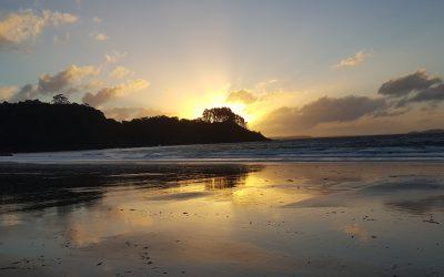 Wonderful Waiheke Island